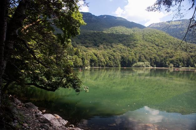 Widok na jezioro biogradsko w parku narodowym biogradska gora w czarnogórze. popularne miejsce turystyczne z dziewiczymi lasami i pięknymi górami.
