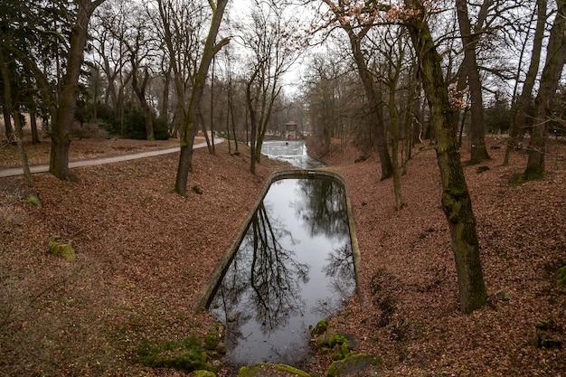 Widok na jezioro w jesiennym parku w pochmurny dzień