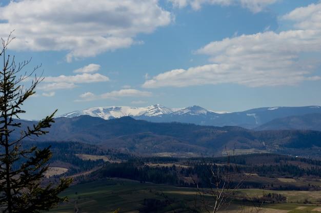 Widok na krajobraz karpat w pochmurny letni dzień. szczyty górskie, lasy, pola i łąki, piękny krajobraz naturalny.