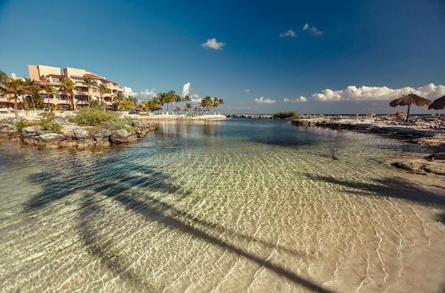 Widok na krystalicznie czystą wodę morza karaibskiego pośrodku naturalnego basenu na meksykańskim wybrzeżu puerto aventuras. w wodzie widać cień palmy.