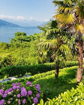 Widok na letni brzeg jeziora como z kwitnącymi krzewami i palmami z przodu, włochy