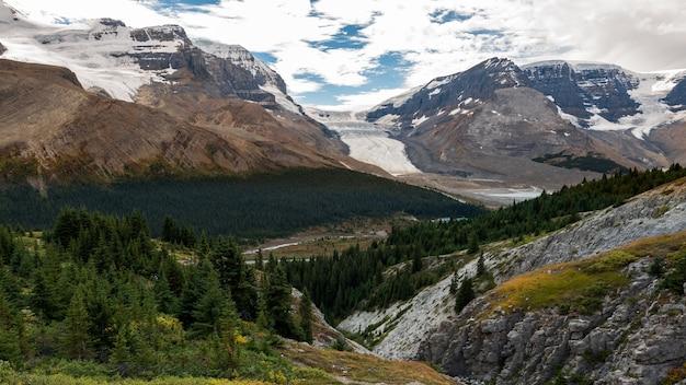 Widok na lodowiec athabasca ze szlaku na szczyt wilcox oraz las i góry w jasper national park, alberta, kanada.