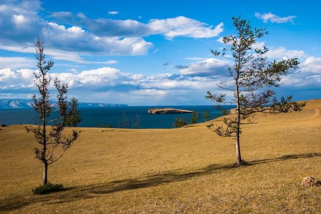 Widok na małą wyspę na jeziorze bajkał ze stepu między dwoma drzewami. drzewa iglaste. żółty step. błękitne niebo z pięknymi chmurami.