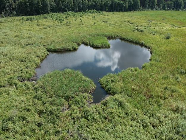 Widok na małe jezioro w zielonym polu