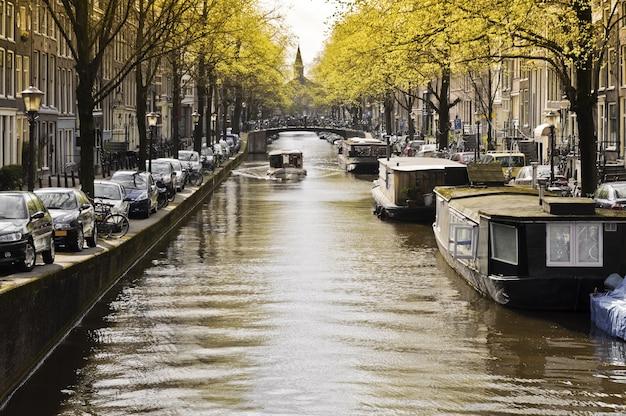 Widok na miasto z amsterdamu w pobliżu rzeki jesienią