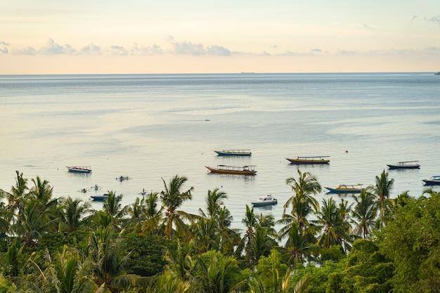 Widok na morze na łodziach płynących po wodzie i zielone palmy z przodu