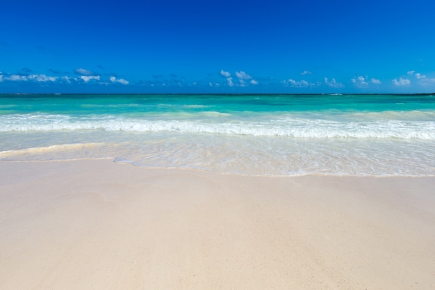 Widok na morze z tropikalnej plaży ze słonecznym niebem