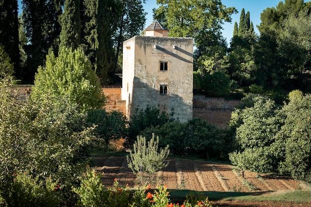 Widok na ogród alhambry w granadzie w hiszpanii
