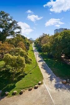 Widok na ogrody parku turia w walencji