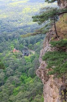 Widok na okolice jałty ze zbocza góry aj-petri (szlak botaniczny, krym, ukraina)