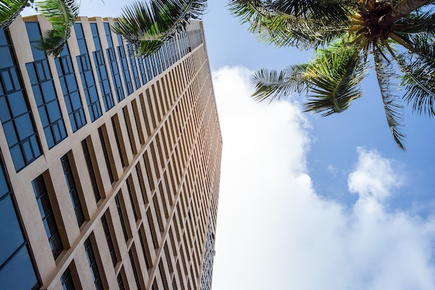 Widok na panoramę architektury z nowoczesnym budynkiem i palmami kokosowymi