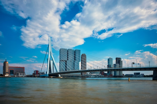 Widok na panoramę rotterdamu z mostem erasmusbrug nad nieuwe maas i drapaczami chmur o nowoczesnej architekturze