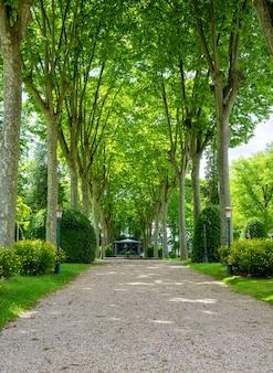 Widok na park oloron sainte marie we francji