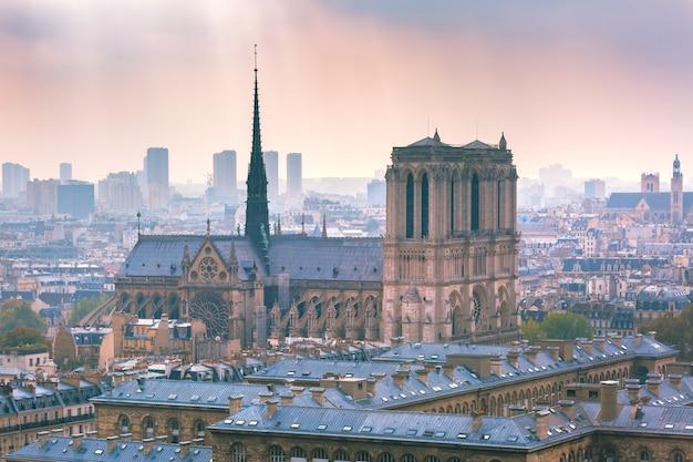Widok na paryż z katedrą notre dame w pochmurny dzień, francja
