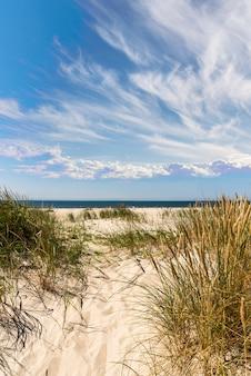 Widok na piaszczystą plażę i błękitne morze na tle błękitnego nieba z chmurami
