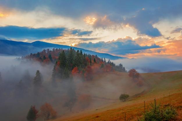 Widok na piękny krajobraz na łące na zboczu wzgórza z jasnym wschodzącym słońcem na tle. poranne słońce oświetla pagórkowate wzgórza promieniami świetlnymi. pojęcie przyrody i środowiska.