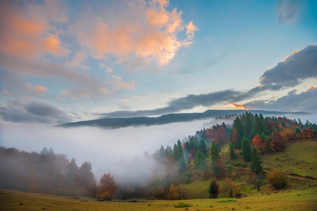 Widok na piękny krajobraz na wzgórzu łąka z jasnym wschodzącym słońcem na tle. poranne słońce oświetla łagodne wzgórza promieniami świetlnymi. pojęcie przyrody i środowiska.