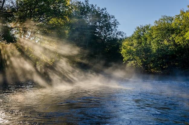 Widok na piękny krajobraz z drzewami, wodą, porannym światłem i mgłą.