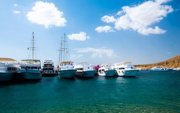 Widok na port z białymi statkami