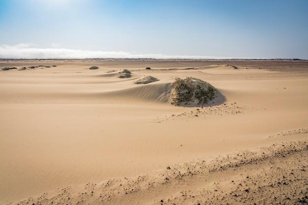 Widok na pustynne wydmy szkieletowe wybrzeża w namibii w afryce.