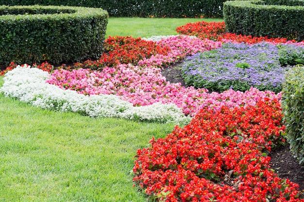 Widok na rabaty kwiatowe z kolorowymi, wielobarwnymi kwiatami i przystrzyżonymi krzewami o różnych kształtach.