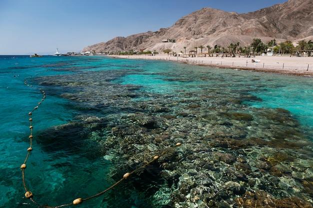 Widok na rafę koralową i plażę w zatoce ejlat, izrael, morze czerwone