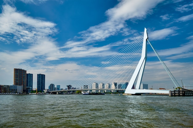 Widok na rotterdam nad nieuwe maas z mostem erasmusbrug rottherdam, holandia