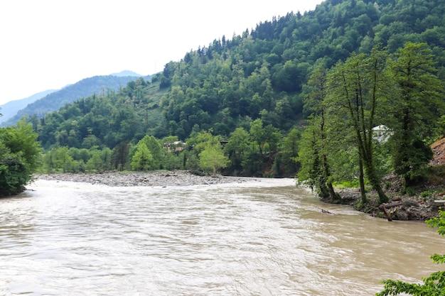 Widok na rzekę acharistskali w górach kaukazu, adjara, georgia