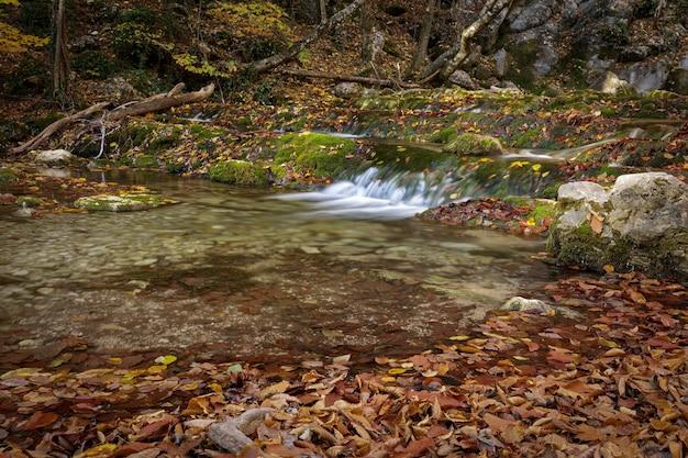 Widok na rzekę płynącą z górskiego wodospadu jesienią. natura.