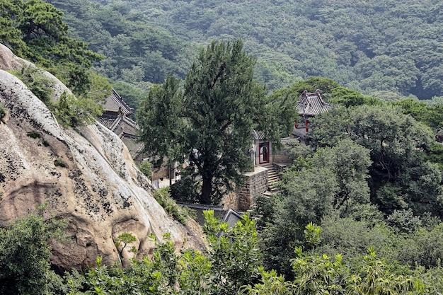 Widok na stary mały klasztor buddyjski wśród drzew i gór porośniętych zielonym lasem w chinach, poprzez gałęzie drzew, chiński krajobraz