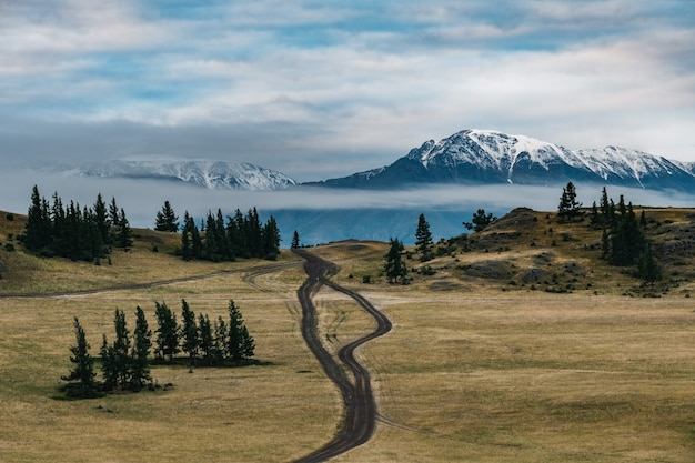 Widok na stepy kurai w górach ałtaj.