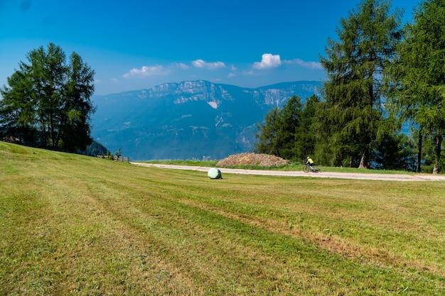 Widok na trawiaste pole z drzewami i górami w słoneczny dzień