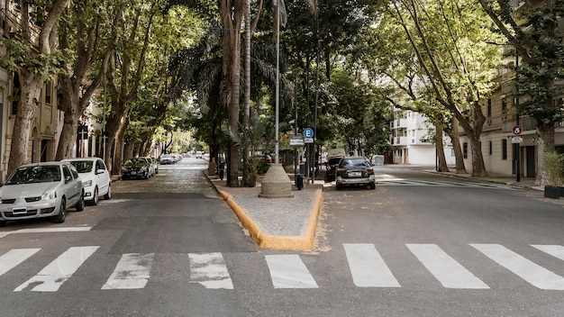 Widok na ulicę miasta z samochodami i przejściem dla pieszych