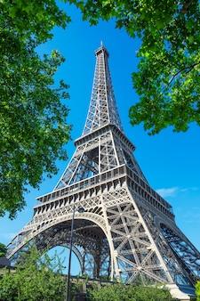 Widok na wieżę eiffla i drzewa w paryżu