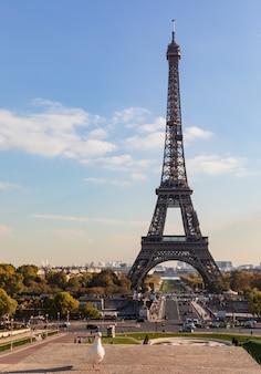 Widok na wieżę eiffla z trocadero