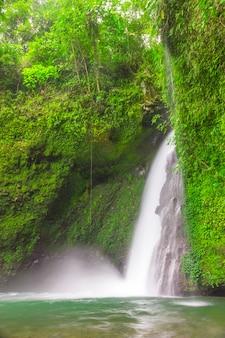 Widok na wodospad w zwolnionym tempie z zielonymi ścianami w tropikalnym lesie