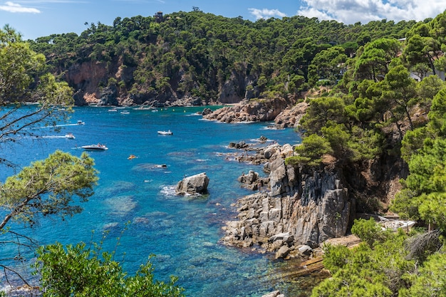 Widok na wybrzeże w punta forcats z łodziami i ludźmi w wodzie, calella de palafrugell.