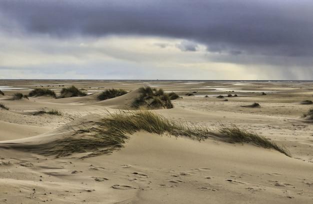 Widok na wydmy na wyspie amrum, niemcy pod zachmurzonym niebem