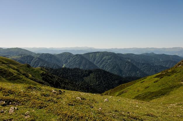 Widok na wzgórza pokryte zieloną trawą w tle gór z wiecznie zielonymi lasami