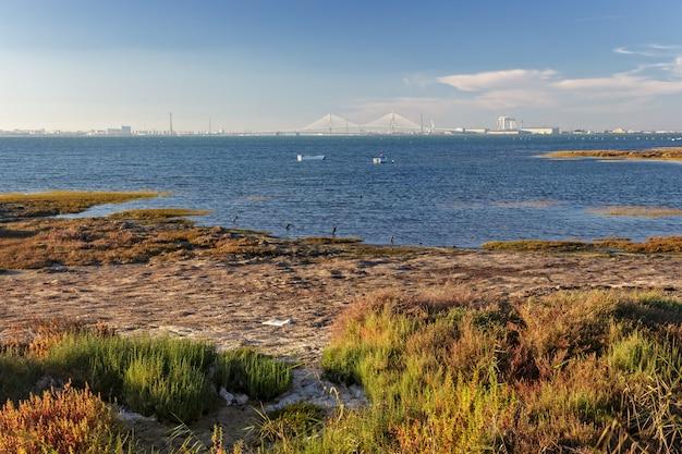 Widok na zatokę cadiz od san fernando