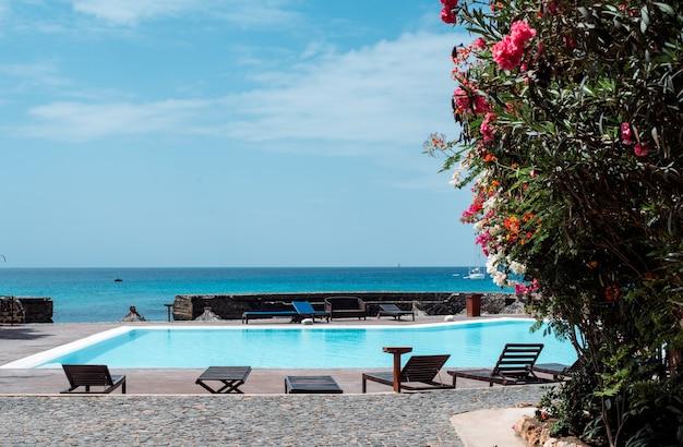 Widok na zewnątrz leżaki i niebieska woda w basenie na tle oceanu na wyspach zielonego przylądka