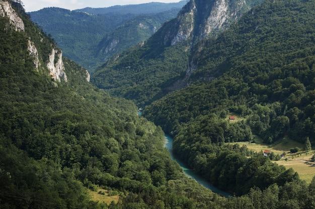 Widok na zielone góry i górską rzekę z góry.