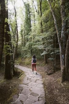 Widok nieznanej kobiety idącej kamienną drogą z tyłu.