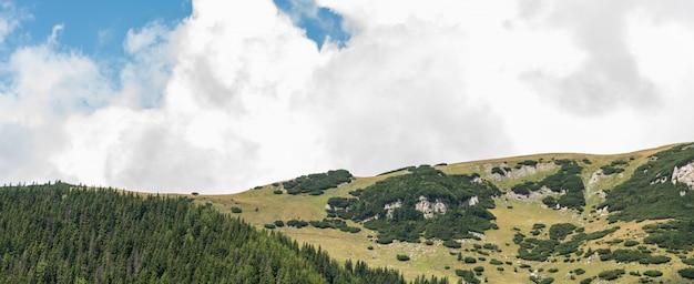 Widok od bucegi gór, rumunia, bucegi park narodowy