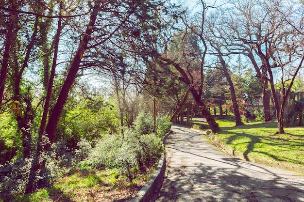 Widok parku