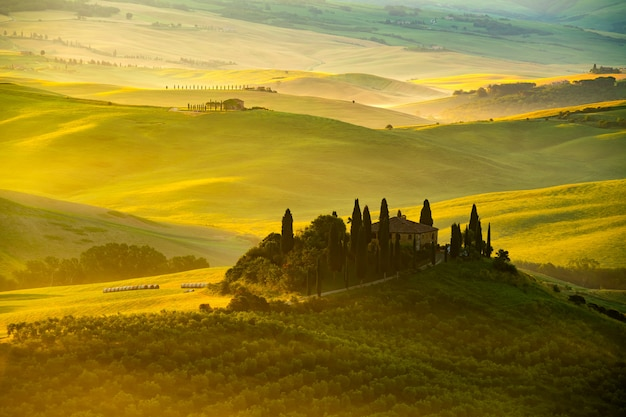 Widok piękny górkowaty toskański pole w złotym ranku świetle