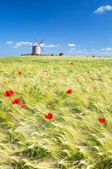 Widok pionowy wiatrak i pole pszenicy, francja, europa.