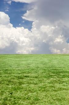 Widok przy zieloną trawą i błękitnym chmurnym niebem