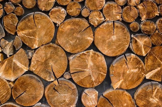 Widok sekcji drzewa końcowego cięcia z pęknięciami i słojami rocznymi tło drewna