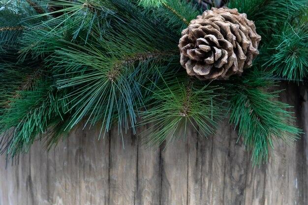 Widok sosnowa gałąź z rożkiem na drewnianej desce